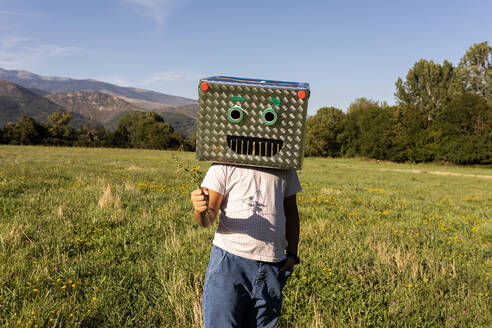Boy with smiling cardboard box on face holding grass while standing in meadow - VABF03523
