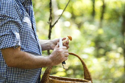 Close-up of man holding mushroom while standing in forest - MAEF13018