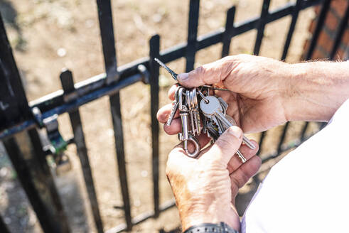 Hands of senior man holding keys at gate of vegetable garden - JCMF01491