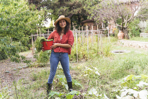 Smiling beautiful woman holding harvested vegetable in bucket at garden - FMOF01204