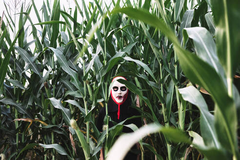 Unrecognizable person wearing masquerade mask and costume standing in cornfield and looking at camera - ADSF16325