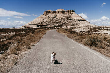 Spain, Navarre, Small dog standing in middle of empty road in Bardenas Reales - EBBF00831
