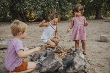 Kids making barbecue at beach - MFF06287