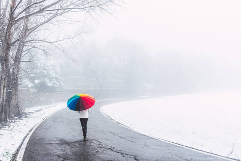 Back view of anonymous person under colorful umbrella walking along road in winter park on snowy day in Pyrenees - ADSF16608