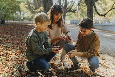 Mother and sons collecting chestnuts in public park - MFF06426