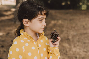 Cute girl holding pine cone while looking away in park - ERRF04610