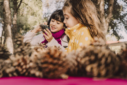 Smiling cute sisters coloring pine cone at picnic table in park - ERRF04625