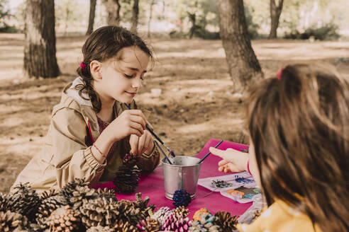 Cute sisters coloring while sitting with pine cones at picnic table in park - ERRF04628
