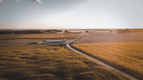 Aerial view of road amidst corns against sky during sunset - ACPF00828