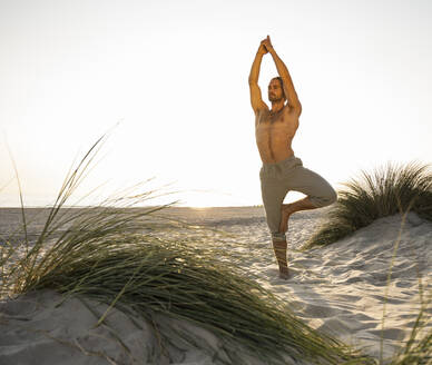Shirtless young man practicing tree pose amidst plants at beach against clear sky during sunset - UUF21796