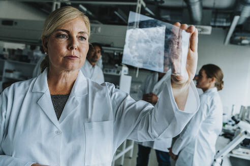 Female scientist examining human brain slide while standing with coworker in background at laboratory - MFF06579