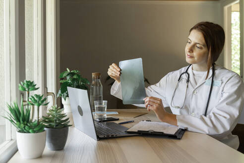 Young female doctor showing x-ray during online consultation from home office - AFVF07378