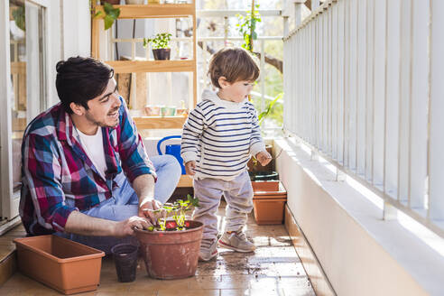 Smiling father looking to boy while planting plant in pot at balcony - FLMF00322