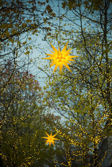 Star shaped Christmas decorations glowing outdoors at dusk - SKAF00151