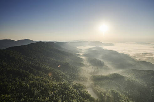 Aerial view of Appalachian forest at foggy sunrise - BCDF00548