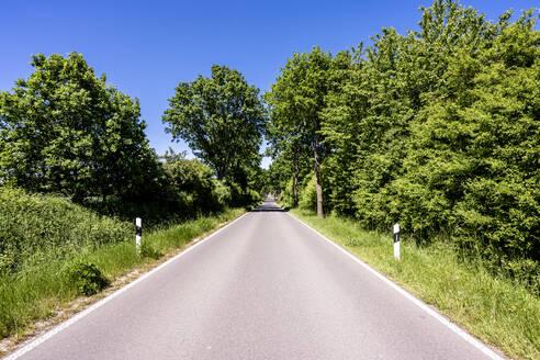 Germany, Mecklenburg-Western Pomerania, Empty asphalt road through Schaalsee Biosphere Reserve in summer - EGBF00590