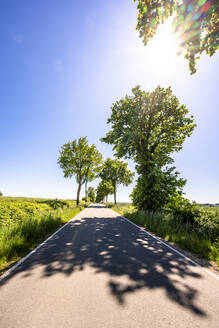 Germany,Mecklenburg-WesternPomerania, Sun shining over empty asphalt road throughSchaalseeBiosphere Reserve in summer - EGBF00593