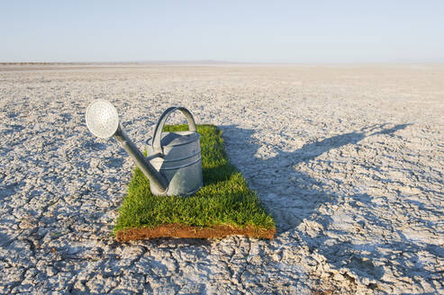 Watering can on grass turf patch on salt flat. - MINF15508