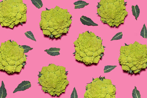 Pattern of Romanesco cauliflowers against pink background - GEMF04564