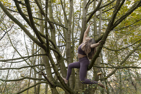 Young woman with arms raised practicing yoga on branches in forest - AXHF00054