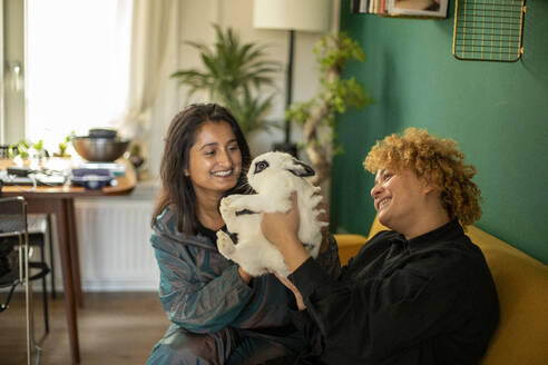 Lesbian couple sitting together on sofa with pet rabbit - AXHF00060