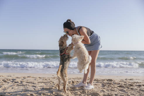 Woman playing with her dogs on beach - JRVF00096