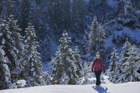 Woman walking in snow covered landscape on sunny day - MRF02458