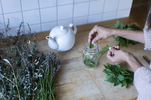 Woman's hands putting herbal leaves in jar while to prepare tea at home - AKLF00026