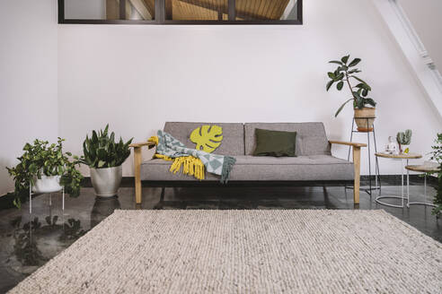 Sofa and potted plants against white wall in loft apartment - MFF07375