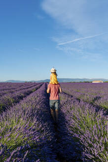 Father piggybacking little daughter in vast summer lavender field - GEMF04704