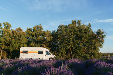 Motor home parked on edge of lavender field in summer - GEMF04713