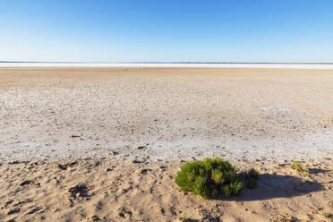 Australien, Ozeanien, South Australia, Stuart Highway, Lake Hart Area, Salzsee - FOF12104