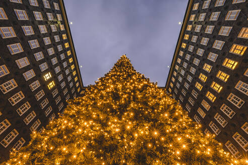 Germany, Hamburg, Illuminated Christmas tree against Sprinkenhof in Kontorhausviertel - KEBF01807