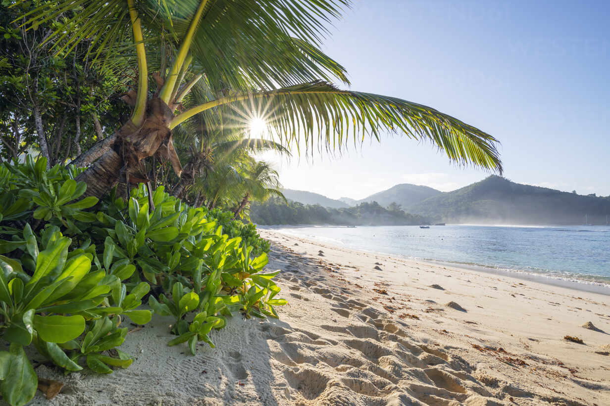 A famous tropical beach with Palm Trees at Baie Lazare. Baie Lazare, Mahe, Mahe Island, Seychelles, Indian Ocean, Africa. - RUEF03214 - Martin Rügner/Westend61