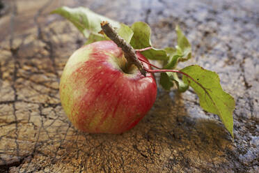 Ripe apple lying on wooden surface - SABF00064