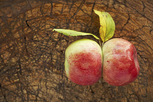 Two ripe apples lying on wooden surface - SABF00067