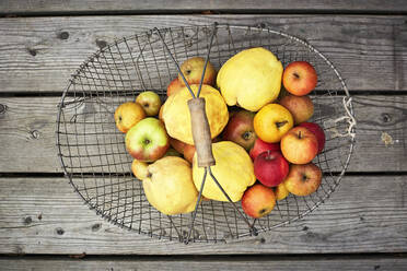 Basket with fresh ripe apples lying on wooden surface - SABF00070