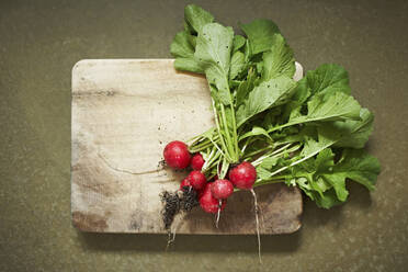 Freshly dug radishes on wooden cutting board - SABF00073