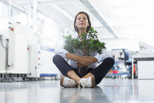 Mature businesswoman with potted plant at factory - JOSEF03889