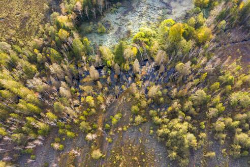 K�nigsdorfer Moor bei K�nigsdorf, Luftbild, T�lzer Land, Oberbayern, Bayern, Deutschland - LHF00844